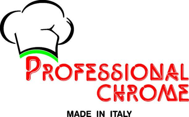 Professional Chrome Logo